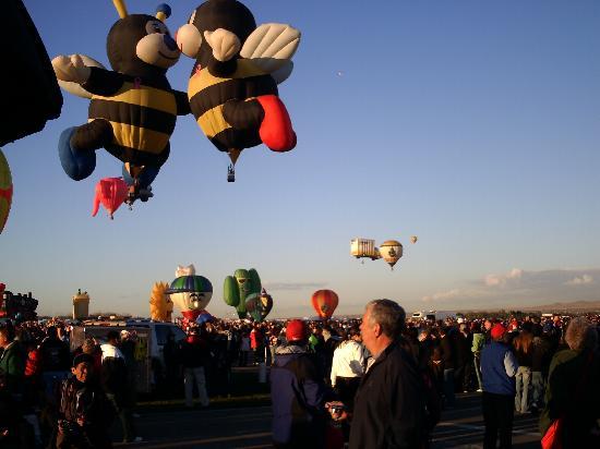 Albuquerque new Mexico baloon festival