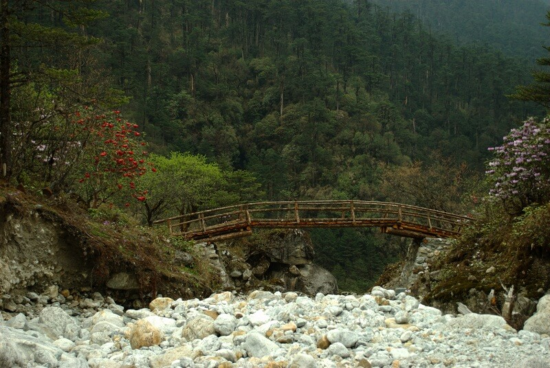 BRIDGE IN THE YUMTHANG VALLEY