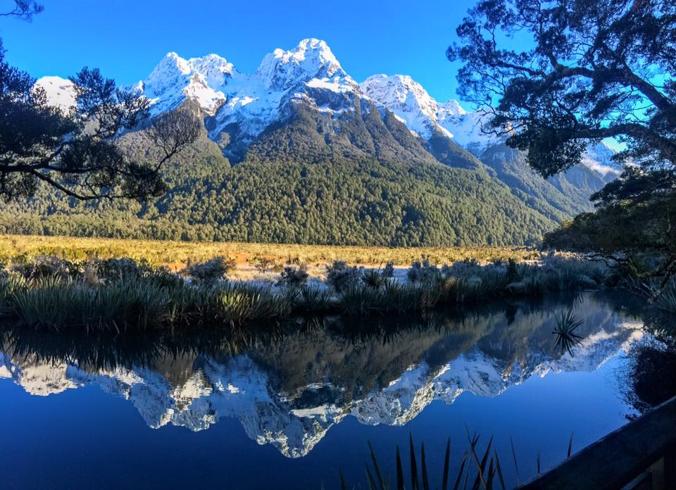 MIRROR LIKE WATER OF THE MILFORD SOUND, NEW ZEALAND