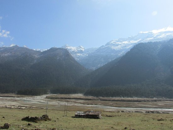 YUMTHANG VALLEY WITH HIMALAYAS IN THE BACKGROUND