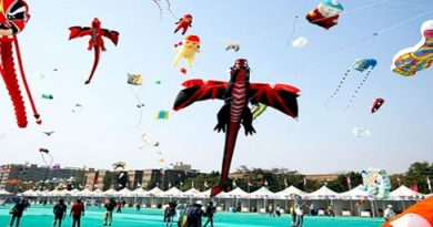Uttarayan International Kite Festival Gujarat