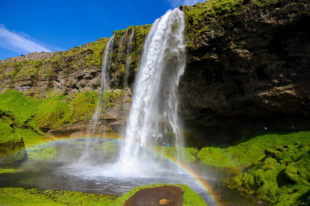 Lush greenary around the Seljalandsfoss falls
